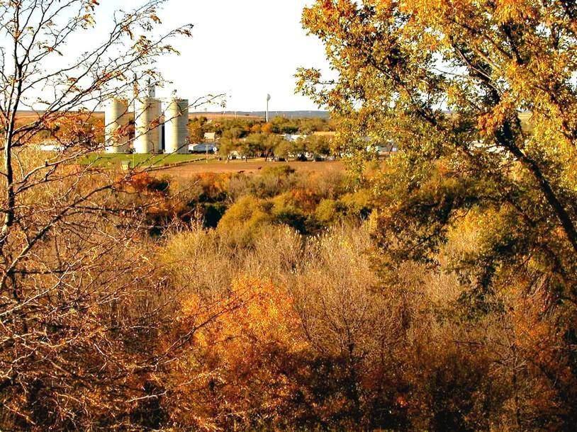 Fall beauty in Luray, KS